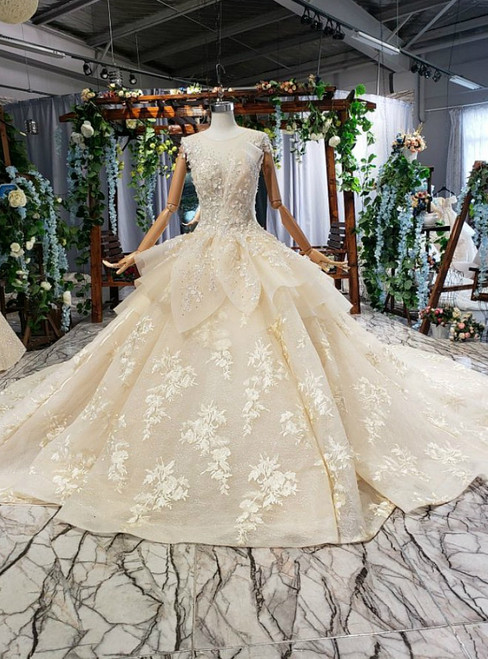 Dark Champagne Tulle Appliques Backless Wedding Dress With Long Train