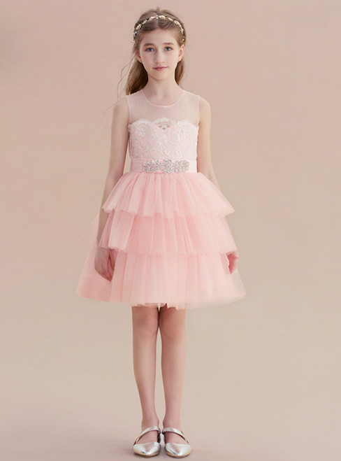 A-Line Pink Tulle Lace Appliques Short Flower Girl Dress
