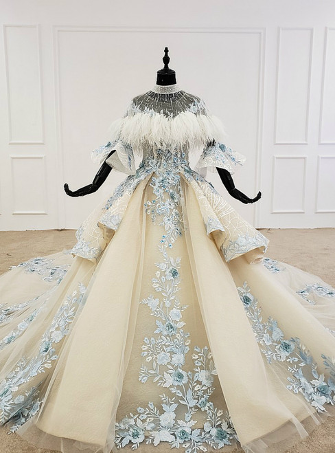 Fashion Champagne Ball Gown Tulle Appliques Short Sleeve Wedding Dress With Long Train