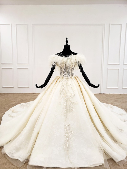 Champagne Ball Gown Tulle Off the Shoulder Appliques Beading Wedding Dress