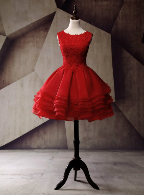 Short Homecoming Dress Organza Homecoming Dress Lace Homecoming Dress
