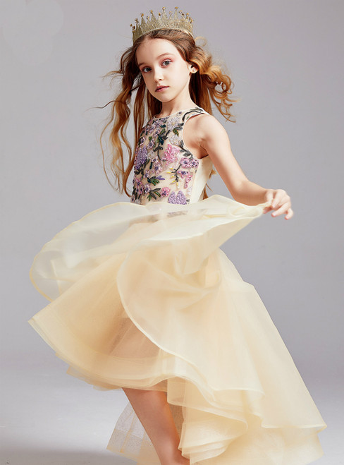 In Stock:Ship in 48 Hours Champagne Tulle Embroidery Beading Hi Lo Flower Girl Dress 2020
