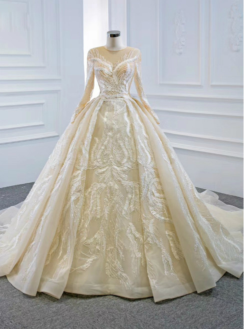 For You Champagne Ball Gown Tulle Appliques Long Sleeve Beading Wedding Dress