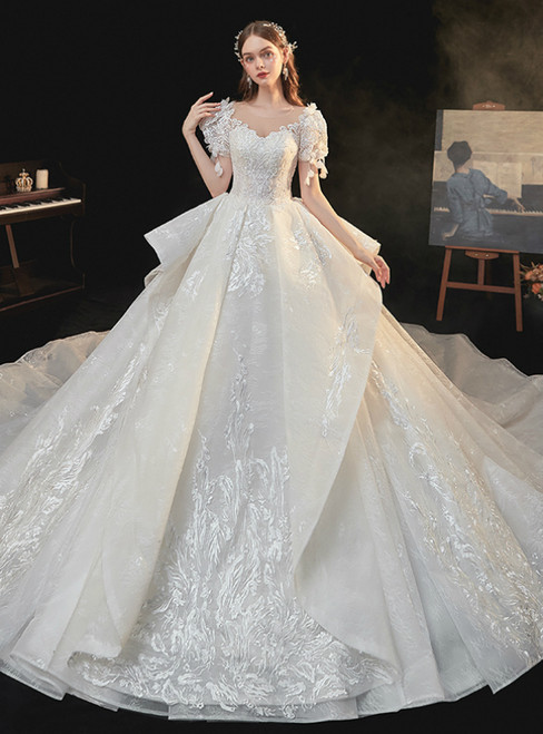 Come In All Styles And Colors Light Champagne Tulle Lace Appliques Puff Sleeve Beading Wedding Dress