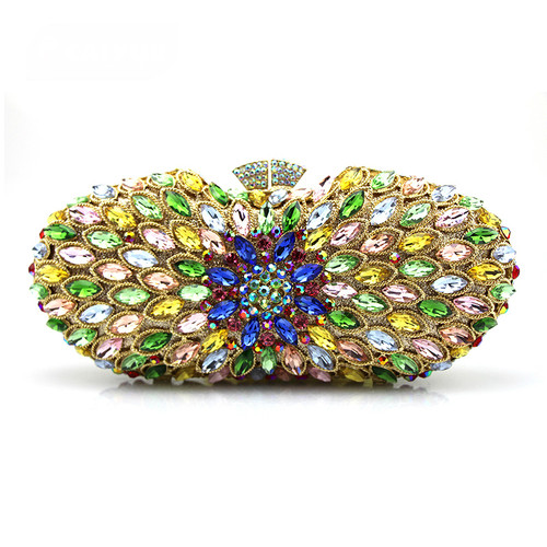 Ms. hand holding Dinner Bag with fashion diamond
