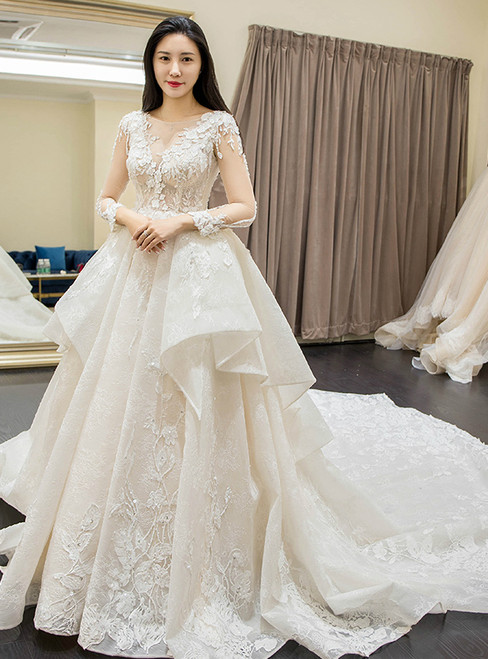 Ball Gown White Long Sleeve Lace Tulle V-neck Wedding Dress