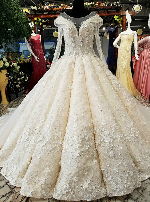 Ball Gown Long Sleeve Long Train Tulle Appliques Haute Couture Wedding Dresses