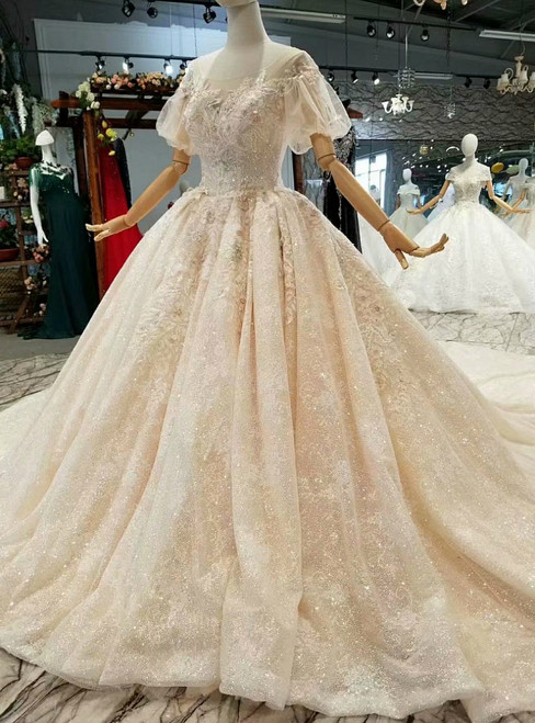 Champagne Tulle Sequins Bateau Neck Backless Long Train Wedding Dresses