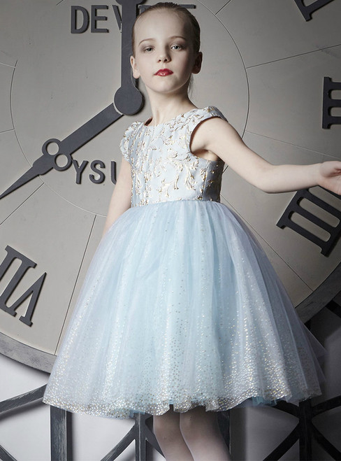 In Stock:Ship in 48 Hours Light Blue Tulle Cap Sleeve Girl Dress