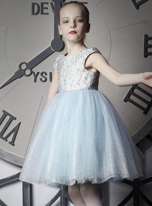 In Stock:Ship in 48 Hours Light Blue Tulle Cap Sleeve Girl Dress