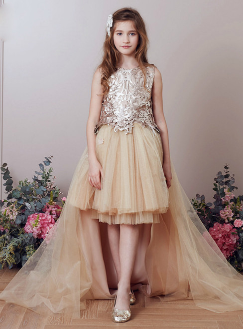 In Stock:Ship in 48 Hours Champagne Tulle Gold Appliques Girl Dress