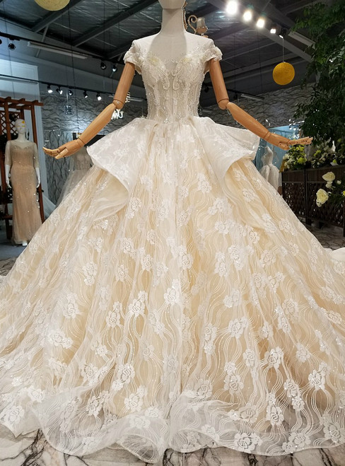 Champagne Tulle Lace Sequins Backless Long Train Wedding Dress