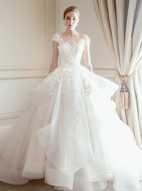 Champagne Tulle Lace Appliques Cap Sleeve Backless Wedding Dress