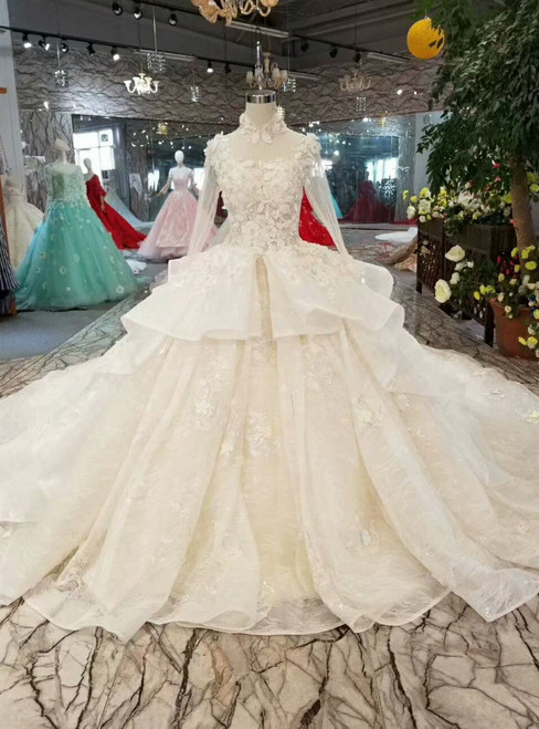 Champagne Tulle High Neck Long Sleeve Backless Appliques Wedding Dress