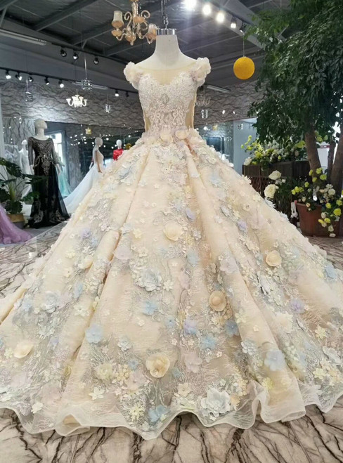 Champagne Ball Gown Bateau Hand Flower Wedding Dress With Appliques