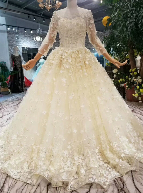 Light Champagne Tulle Appliques Long Sleeve Floor Length Wedding Dress