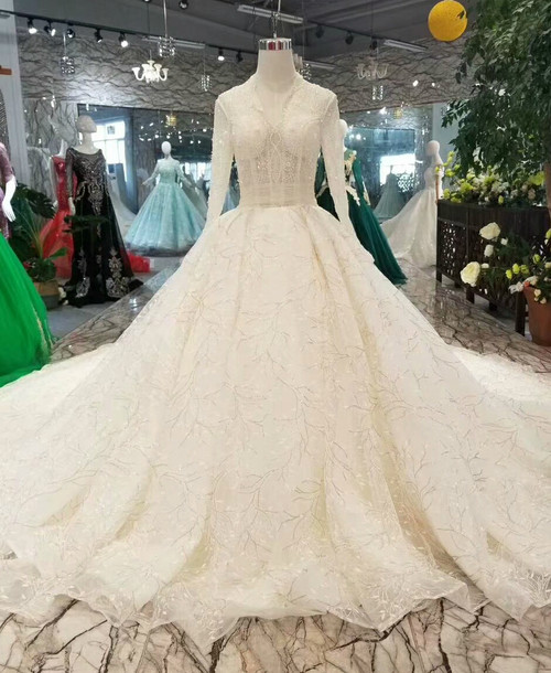 Ball Gown Tulle Lace Sequins V-neck Long Sleeve Wedding Dress With Long Train