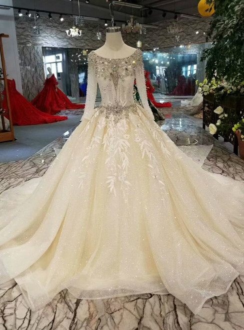 Light Champagne Tulle Sequins Long Sleeve Backless Appliques Wedding Dress