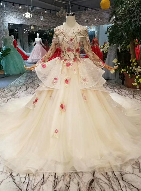 Champagne Ball Gown Tulle Sequins Embroidery Appliques Long Sleeve Wedding Dress