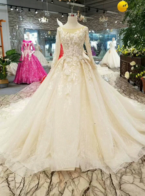 Chamapgne Ball Gown Tulle Sequins Appliques Backless Long Sleeve Wedding Dress