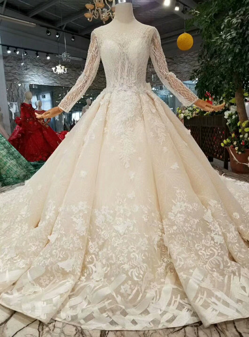 Champagne Ball Gown Tulle Long Sleeve Backless Appliques Wedding Dress With Removable Train