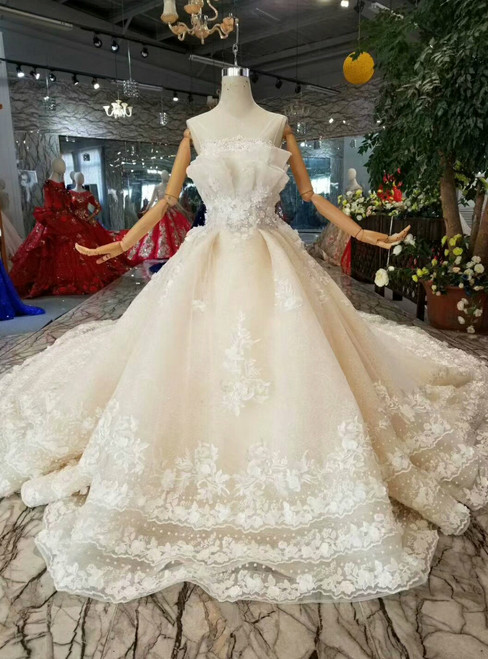 Champagne Ball Gown Tulle Appliques Backless Wedding Dress With Train