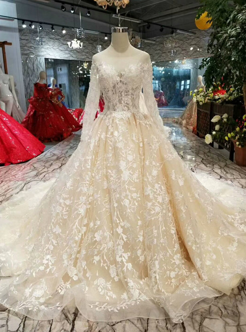 Champagne Tulle Appliques Bateau Long Sleeve Backless Wedding Dress