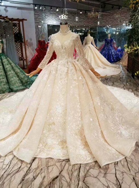 Champagne Ball Gown Tulle Appliques High Neck Long Sleeve Wedding Dress