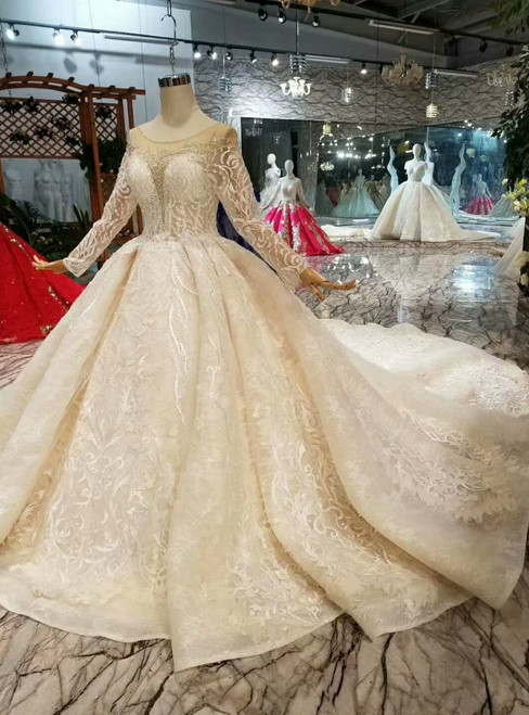 Champagne Ball Gown Tulle Lace Appliques bateau Long Sleeve Wedding Dress