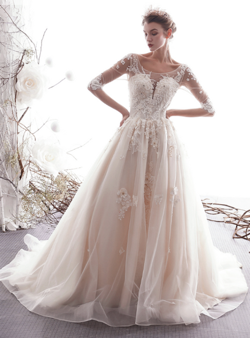 Champagne Tulle Appliques Bateau Half Sleeve Backless Wedding Dress