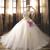 Light Champagne Tulle Appliques Bateau Long Sleeve Wedding Dress