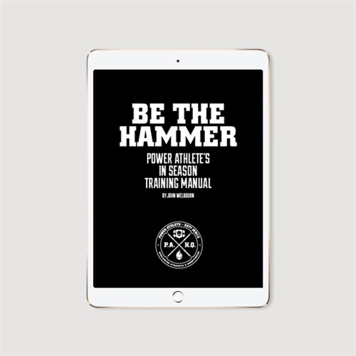 Be The Hammer - In Season Training Manual - e-book