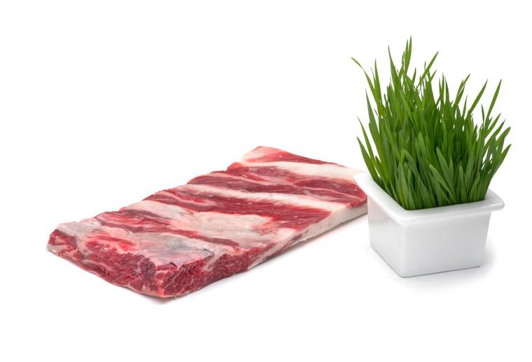 Wagyu short ribs (uncooked)
