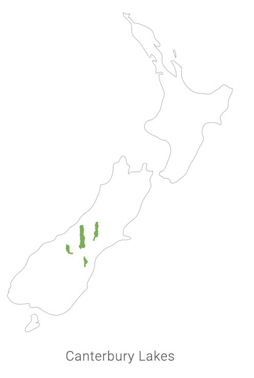 Catch area for New Zealand king salmon