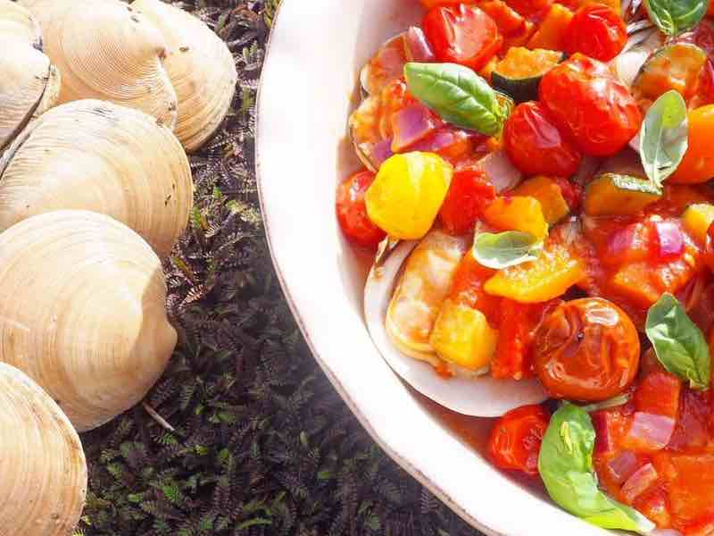 Steamed clams with ratatouille