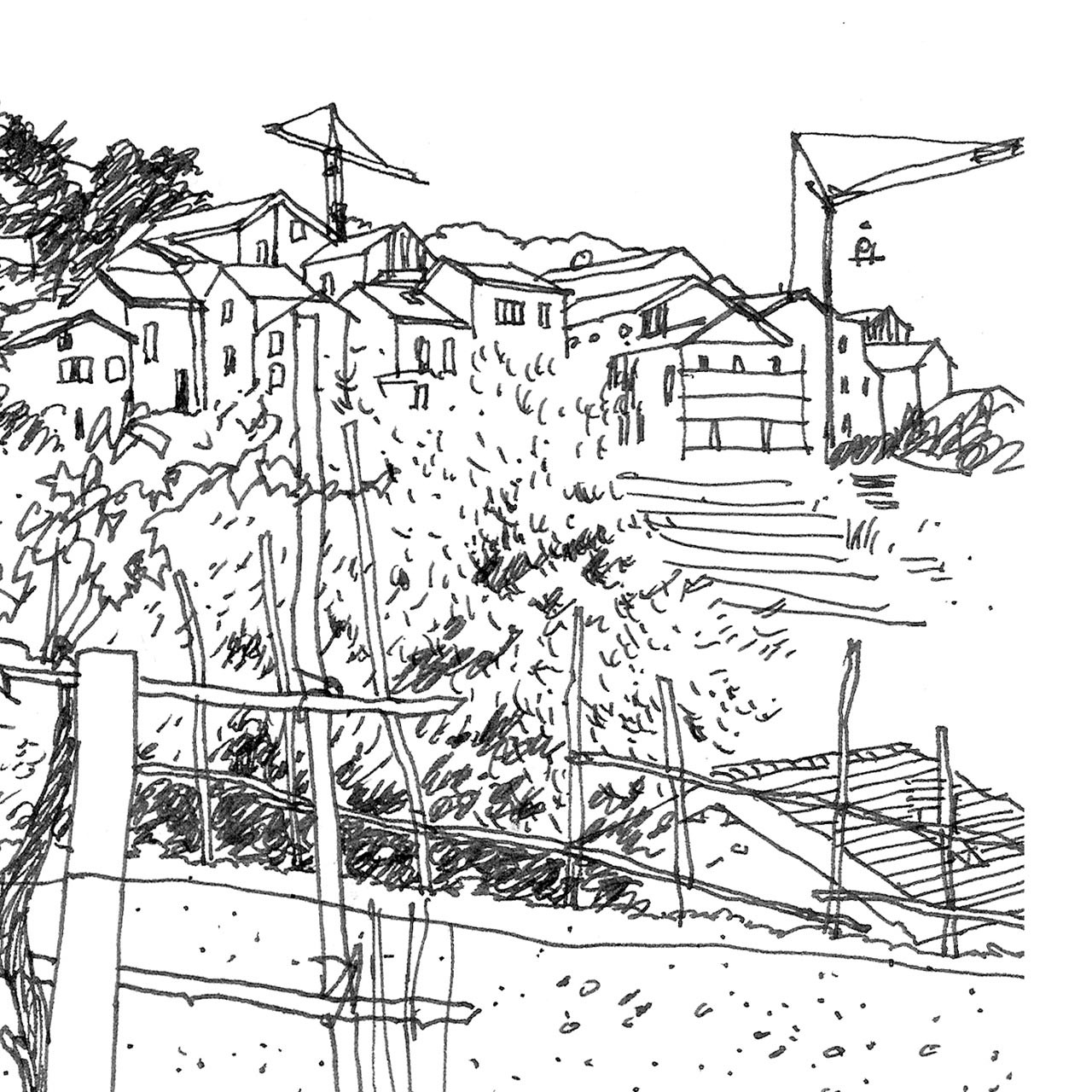 'Vineyard' Art Print (ink drawing by David Cobley) from The Printed Home