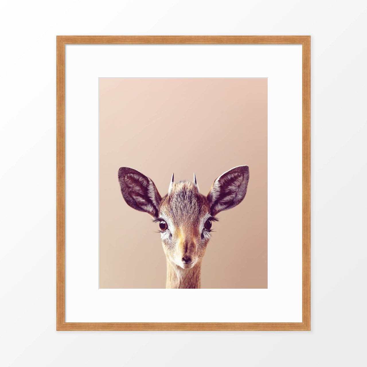 'Antelope' Modern Animal Poster from The Printed Home