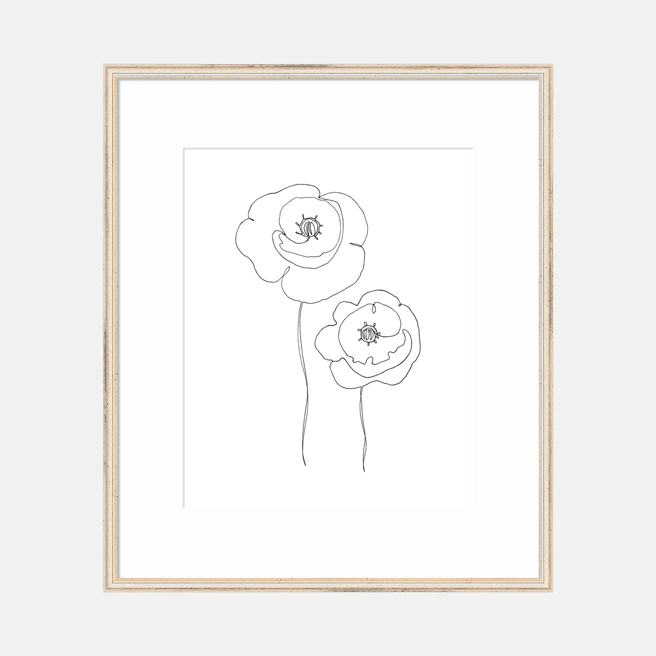 Single Line Poppies