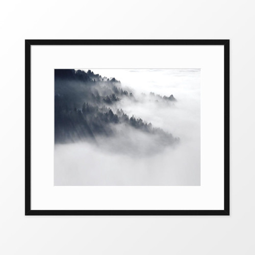'Forest Mist II' Photography Poster from The Printed Home