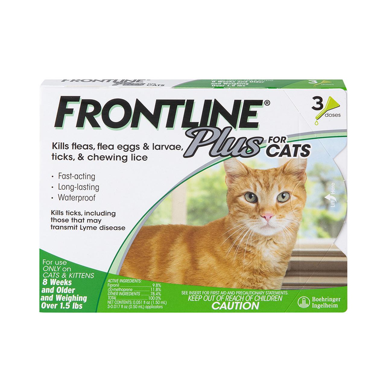 Frontline Plus Flea & Tick Treatment for Cats & Kittens - Front
