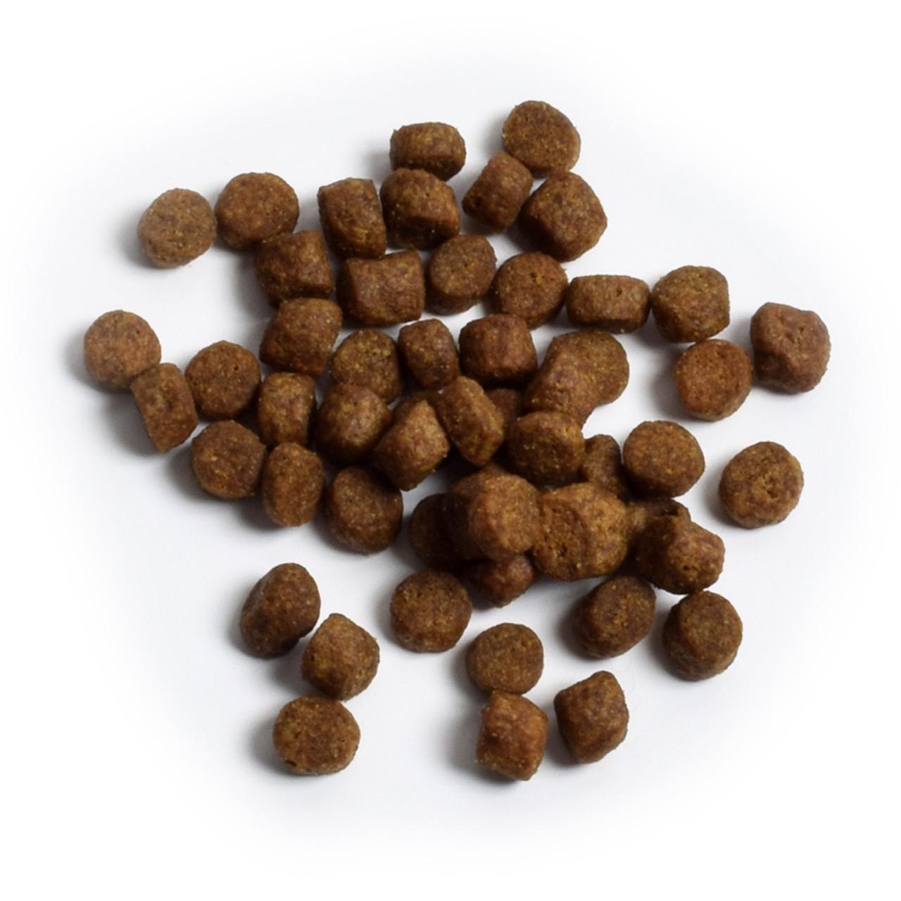 Open Farm Wild-Caught Salmon Recipe Dry Dog Food