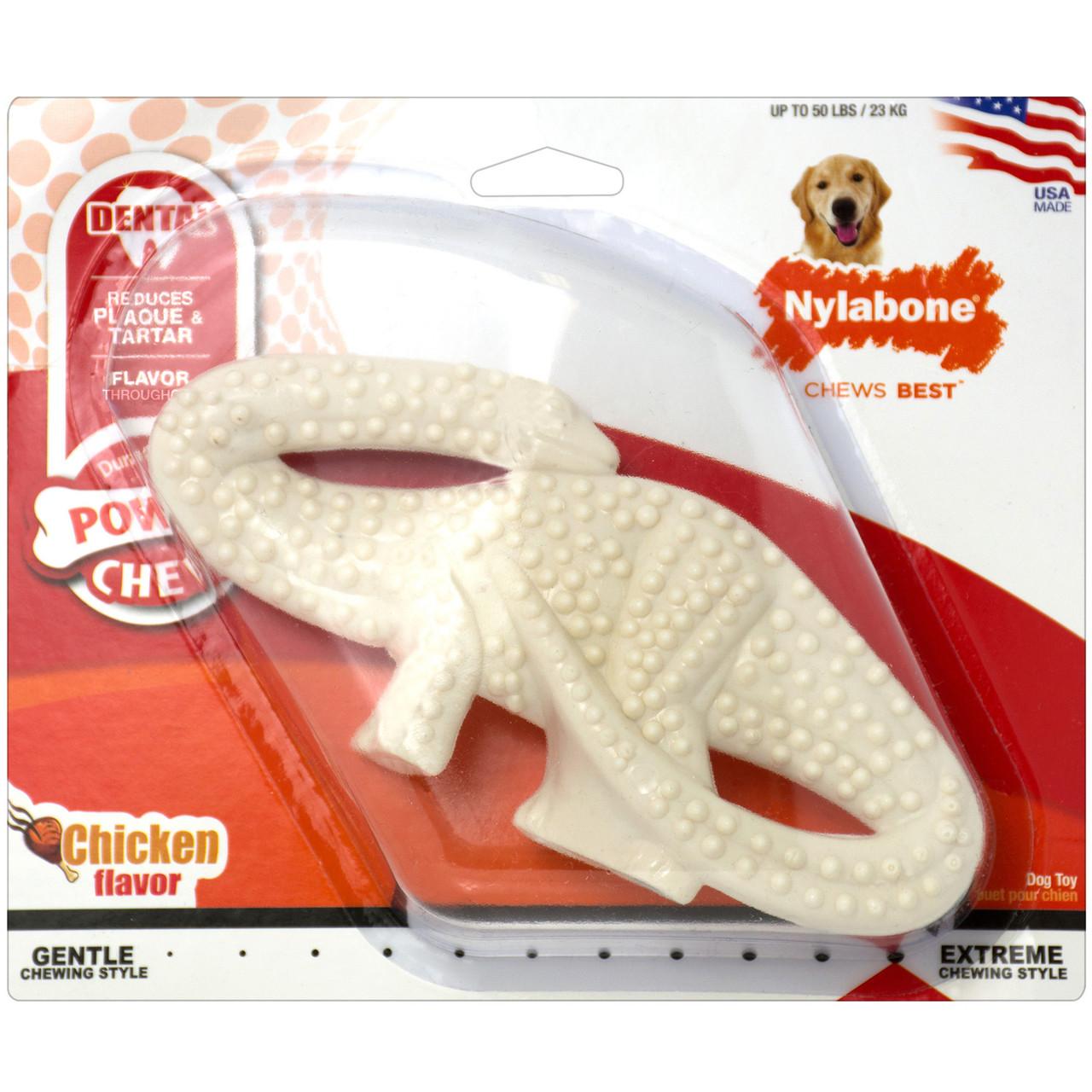 Nylabone Power Chew Dental Dinosaur Dog Toy