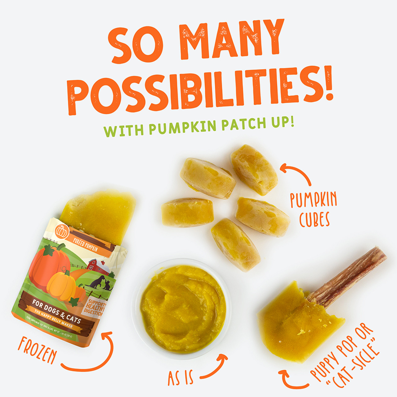 So Many Possibilities With Pumpkin Patch Up!