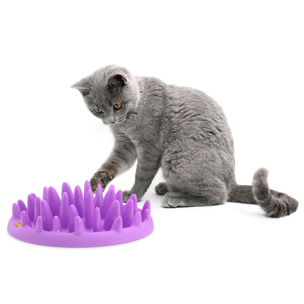 Catch Interactive Cat Feeder