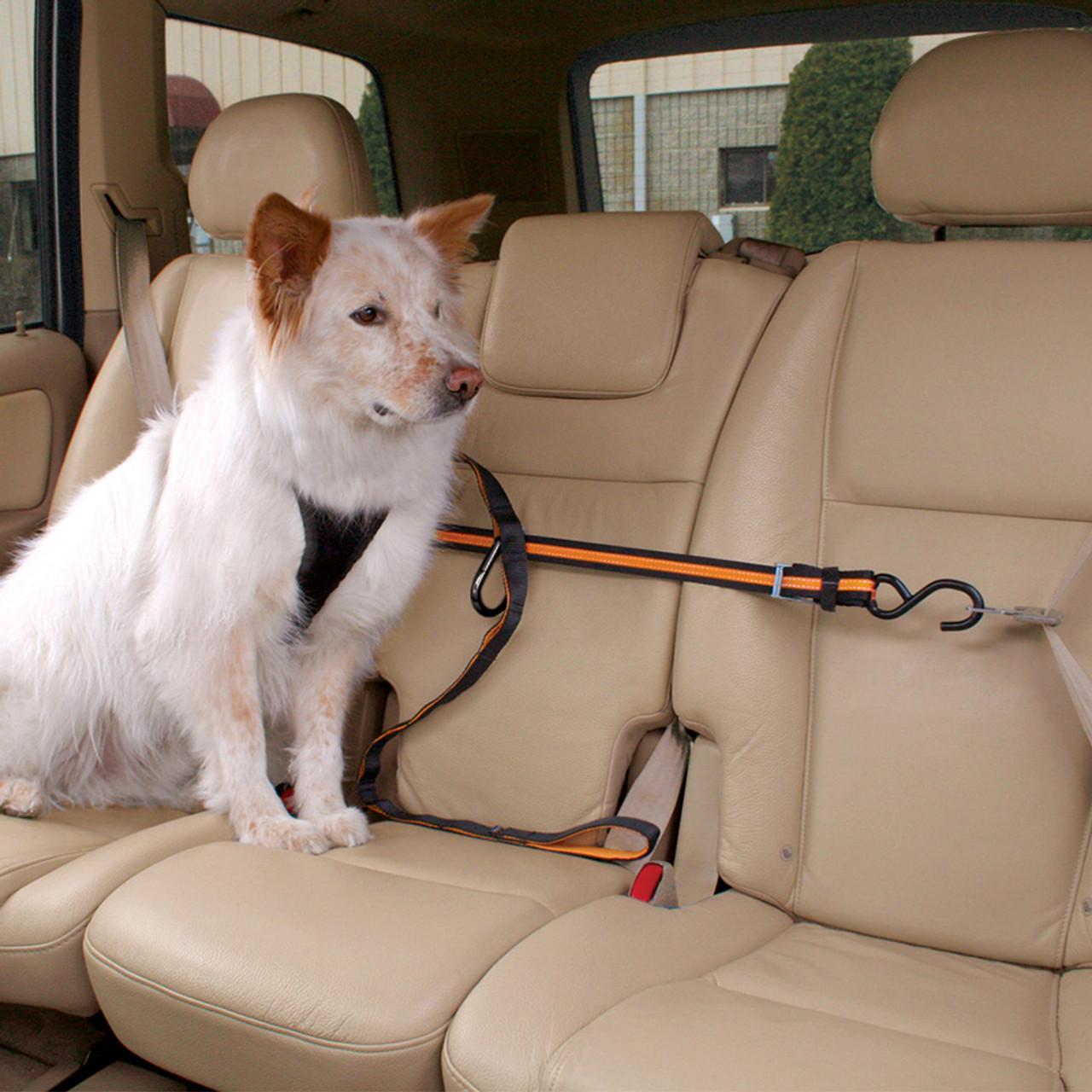 Kurgo Auto Zip Line for Dogs