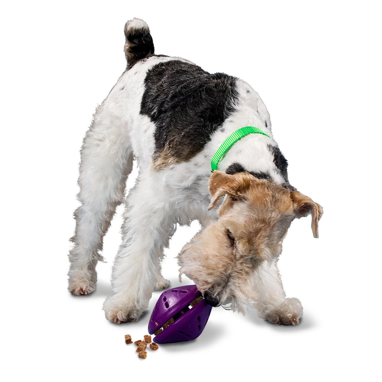 Busy Buddy Twist n' Treat Dog Toy