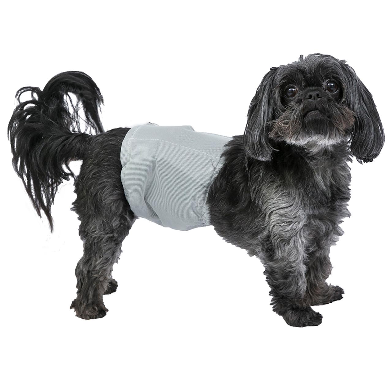 PoochPants Reuseable Male Dog Diaper Wrap