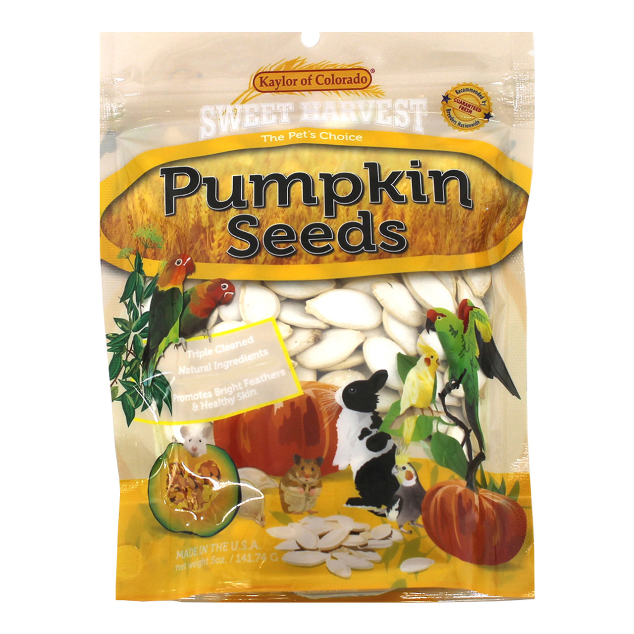 Sweet Harvest Pumpkin Seeds Small Animal & Bird Treats