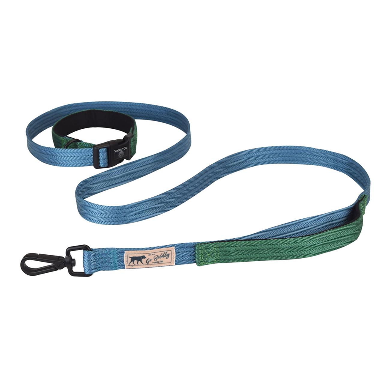 Hamilton Go Boldly Ocean & Green Dog Leash