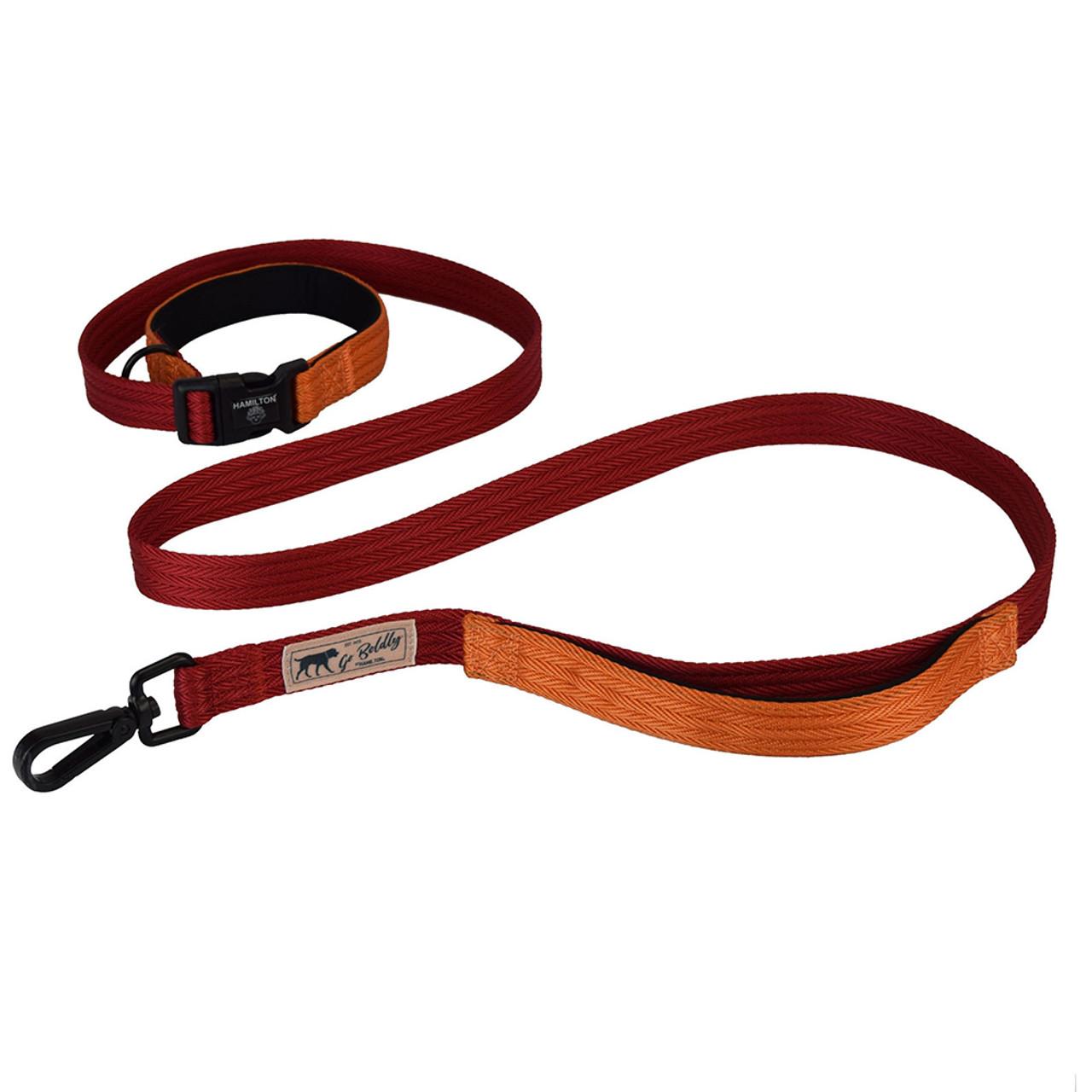 Hamilton Go Boldly Red & Mango Dog Leash